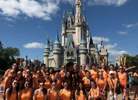 D211 Post: Pirates Have a Magical Spring Break